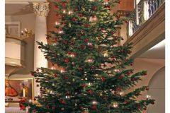Weihnachten Kirchengemeinde Krempe 2008 1